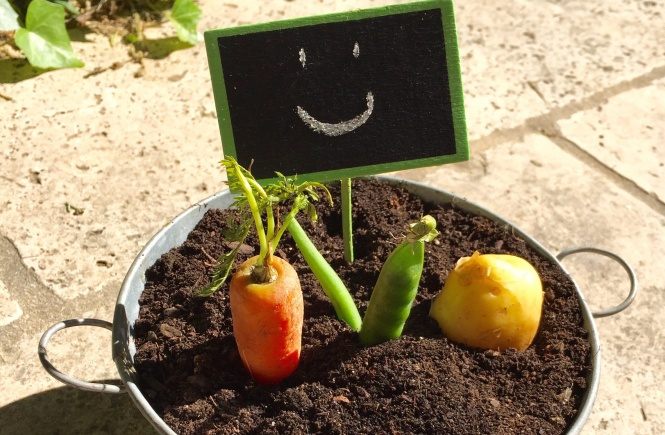 Jardiniere de Legumes @Delphinn
